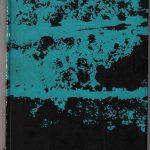Le poesie di Nabokov